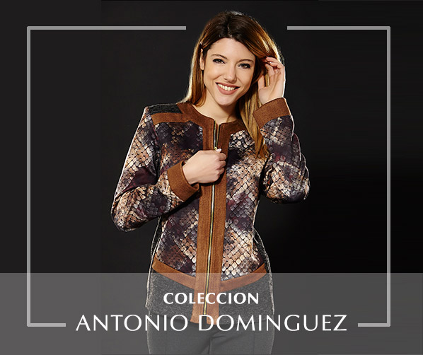 Coleccion Antonio Dominguez